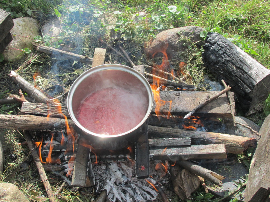 Boiling water and fire - yes, my kids play with both. Here's their raspberry syrup concoction.